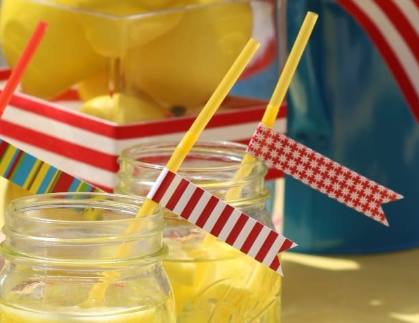 The Celebration Shoppe Backyard BBQ straw slips