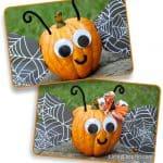 Halloween Butterfly Pumpkin