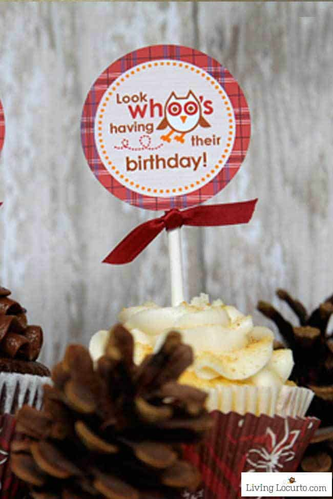 Celebrate a fall birthday this season with these cute Owl Birthday Party ideas and printables. Unique party designs and desserts with a plaid outdoor camping theme.