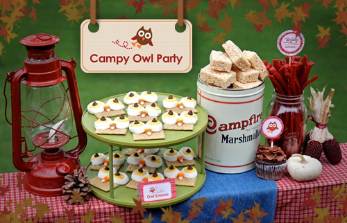 Owl Camping Party