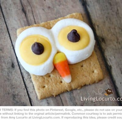 Owl S'mores – Sweet Treat Round-Up
