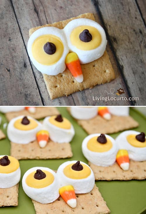 Owl Smores Fun Food Fall Party Recipe for Kids