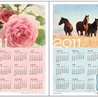2011 Calendars Free Printable by Living Locurto