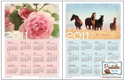2011 FREE Printable Wall Calendar