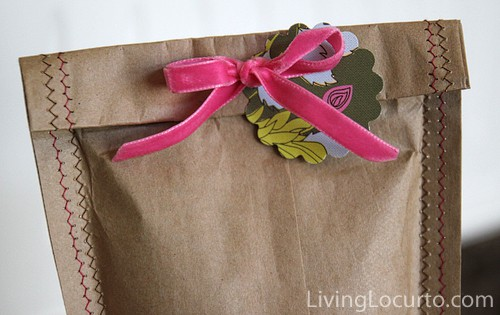 Homemade Gift Bag - Easy Sewing Craft.  LivingLocurto.com