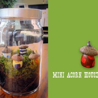 Mini Acorn Houses – DIY Terrarium Craft