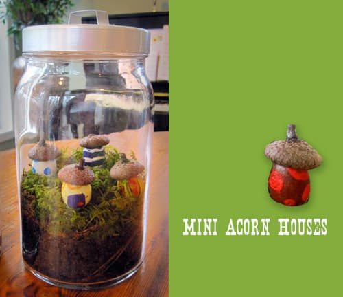 Mini Acorn Houses DIY Terrarium Craft