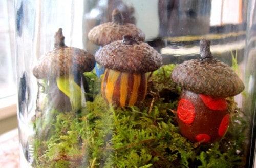 Mini Acorn Houses - Fun & Easy DIY Terrarium Craft for Kids. LivingLocurto.com