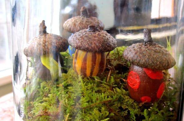 Mini acorn houses diy terrarium craft for Acorn house designs