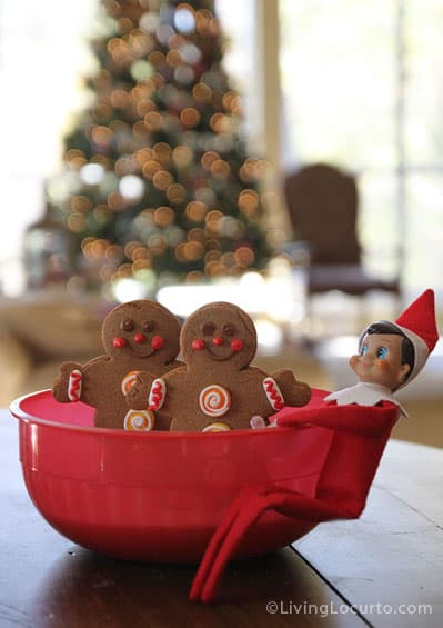 Elf on the Shelf Idea - Magic Seeds for Cookies - Living Locurto