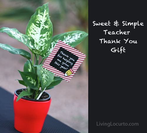 Easy Teacher Appreciation Gift Idea! Thank you for helping me grow this year Free Printable Tags for a flower or plant. LivingLocurto.com
