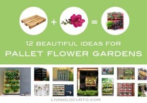 12 Beautiful Ideas for Pallet Flower Gardens via Living Locurto