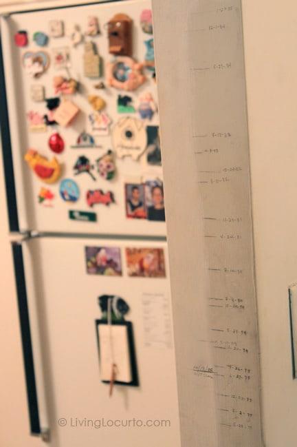 Grandma's Retro Kitchen - House Tour - Living Locurto - Growth Chart