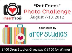 I Heart Faces Pet Faces Photo Challenge