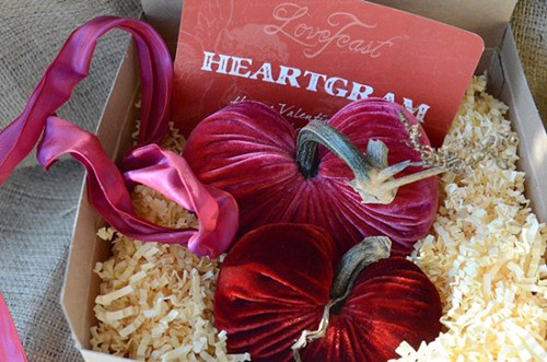 LoveFeast HeartGram Valentine's Day Gift Pillow - Giveaway by Living Locurto