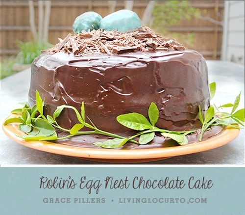 How to make a Robin's Egg Nest Chocolate Cake for a spring celebration, Easter or baby shower.