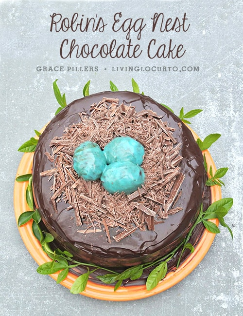Robin's Egg Chocolate Cake. Wonderful Spring or Easter Party Food Recipe Idea