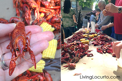 Fun Food Idea for a Crawfish Boil by Amy Locurto. LivingLocurto.com