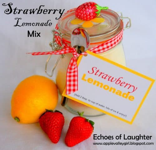 Strawberry Lemonade Mix By Echoes of Laughter