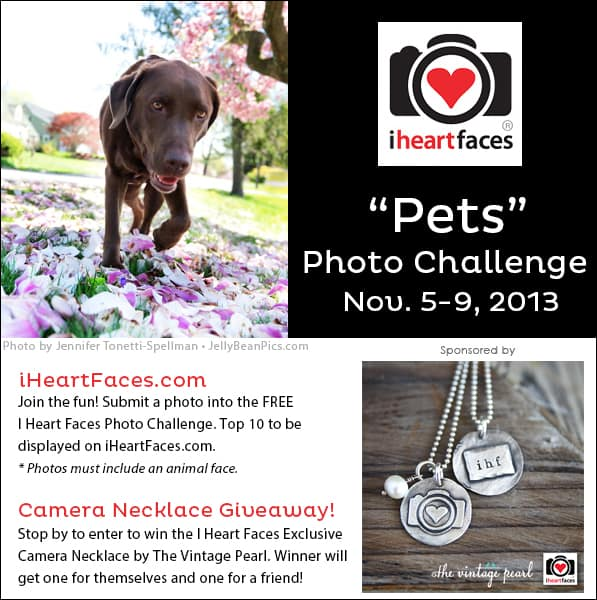 I Heart Faces November 2013 Pet Photo Challenge & Necklace Giveaway