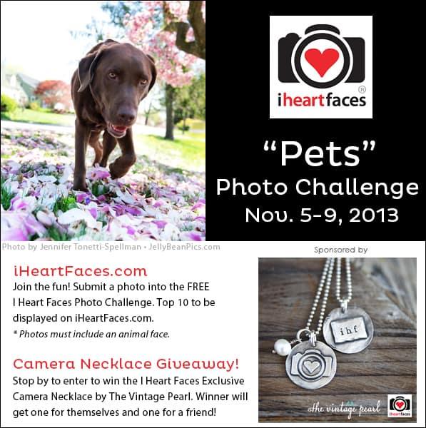 I Heart Faces November 2013 Pet Photo Challenge & Necklace Giveaway