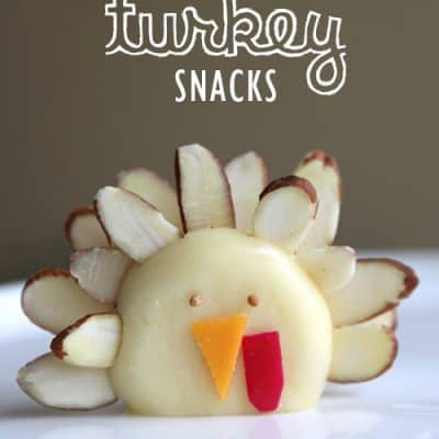 Turkey Cheese Healthy Snacks – Fun Food Ideas for Kids