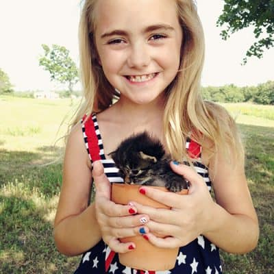 Cute Kitten Photos