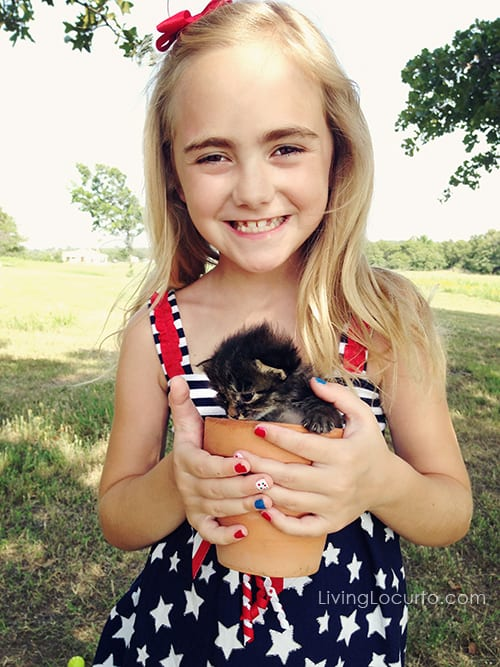 Cute Kitten! LivingLocurto.com