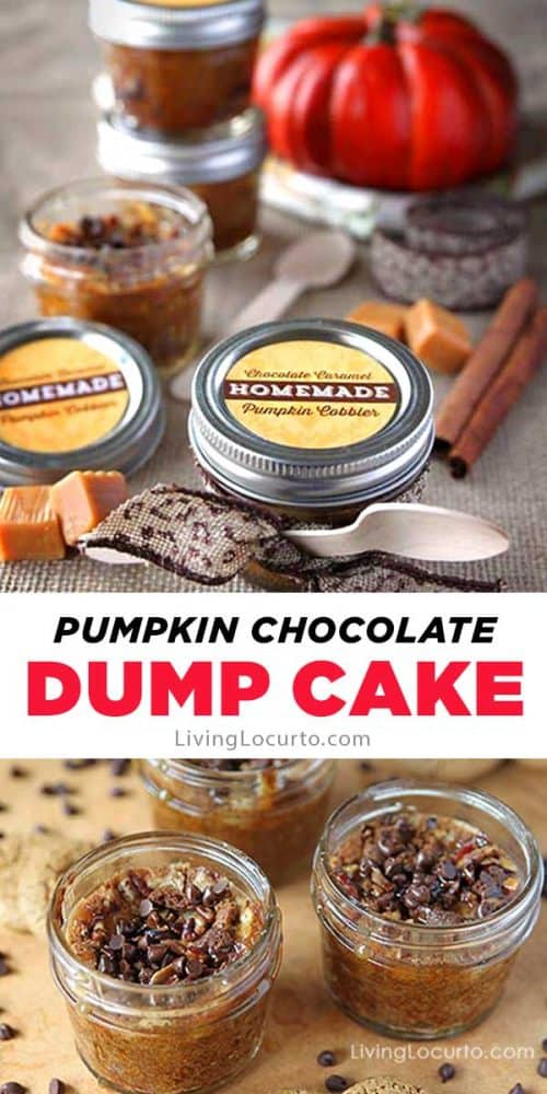 Easy pumpkin dump cake recipe topped with chocolate chips. Mason jar dessert with free printable gift tags.