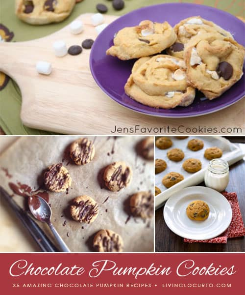 35 Amazing Chocolate Pumpkin Recipes! LivingLocurto.com