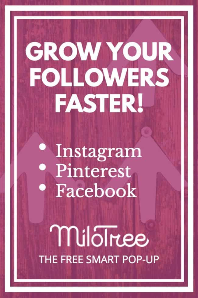 How to Grow your social media following!