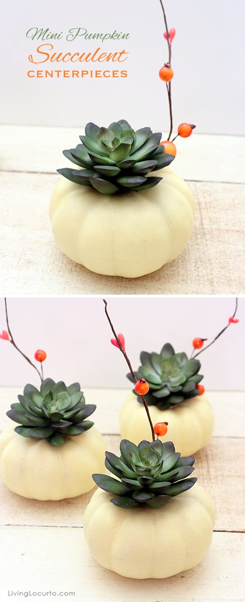 Mini Pumpkin DIY Succulent Centerpiece Craft - Perfect for a Thanksgiving Dinner Table or gifts. LivingLocurto.com