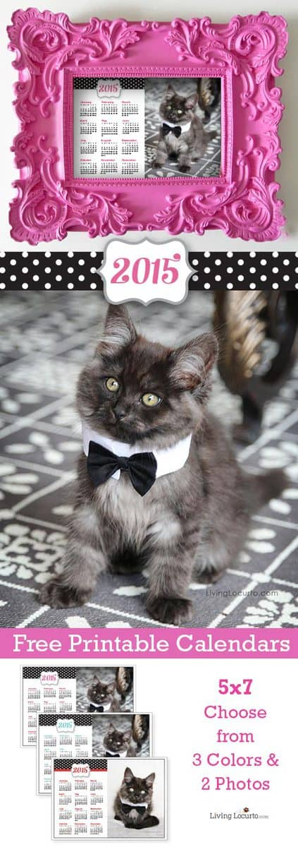 2015 Free Printable Calendars - Cute kitten desktop calendar from LivingLocurto.com