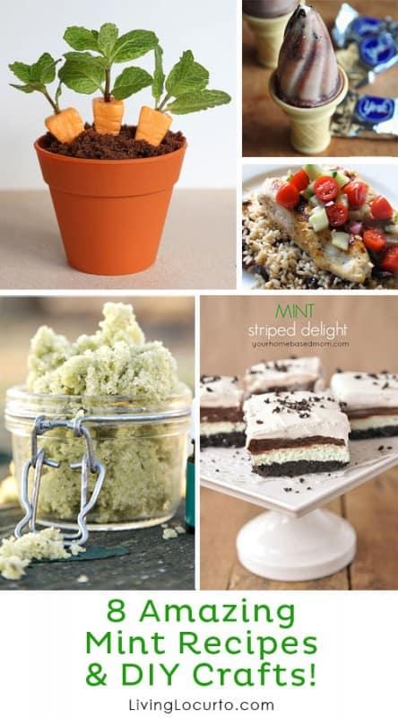 8 Amazing Mint Recipes & DIY Crafts! LivingLocurto.com