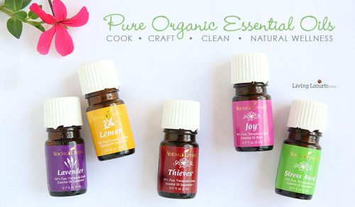 Young Living Essential Oils with LivingLocurto.com