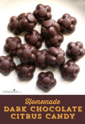 Dark Chocolate Citrus Candy | No-Bake Recipe
