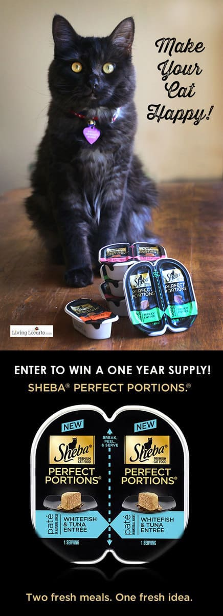 Make your cat happy and enter to win a year's supply of SHEBA® PERFECT PORTIONS™ cat food! LivingLocurto.com