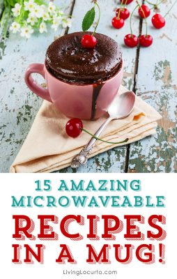 15 Microwaveable Recipes In A Mug