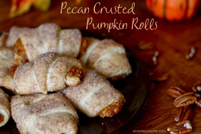 Pecan Crusted Pumpkin Rolls would be perfect for any fall party!