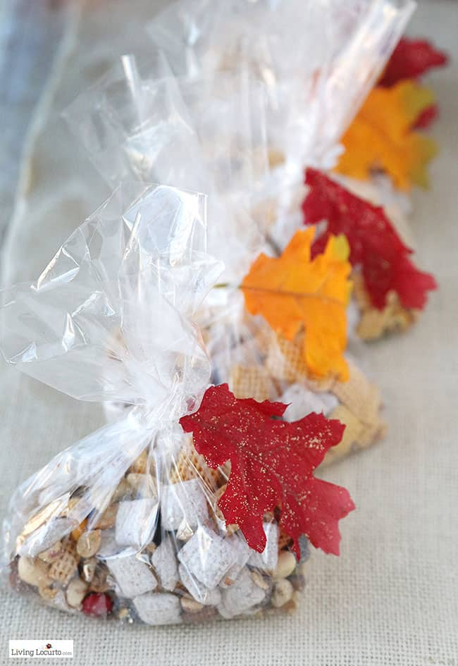 Harvest Hash Trail Mix Treat Bags. Cute DIY Fall Gift or Thanksgiving Party Favor. by @livinglocurto