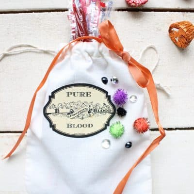 Simple DIY Halloween Treat Bags