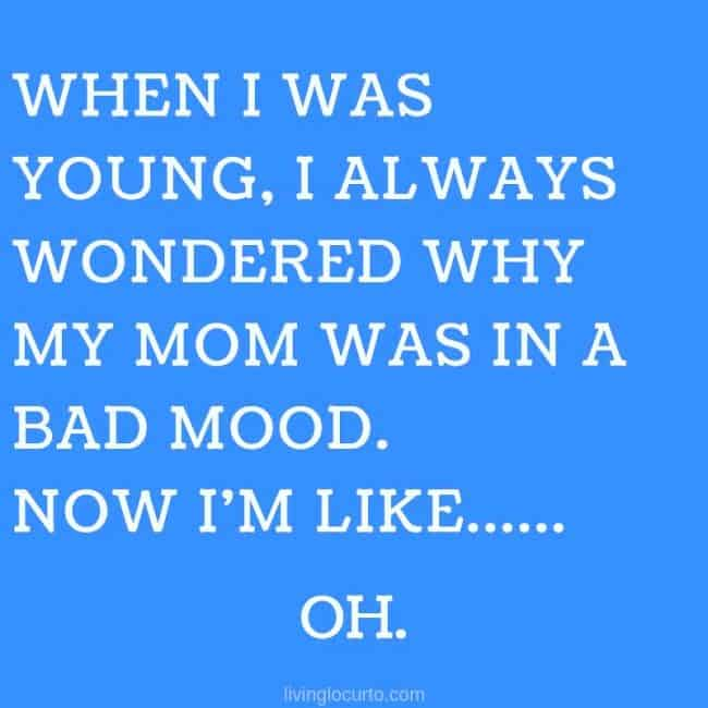 8 Reasons You are Not Just a Mom. Funny Parenting meme quote for mothers.