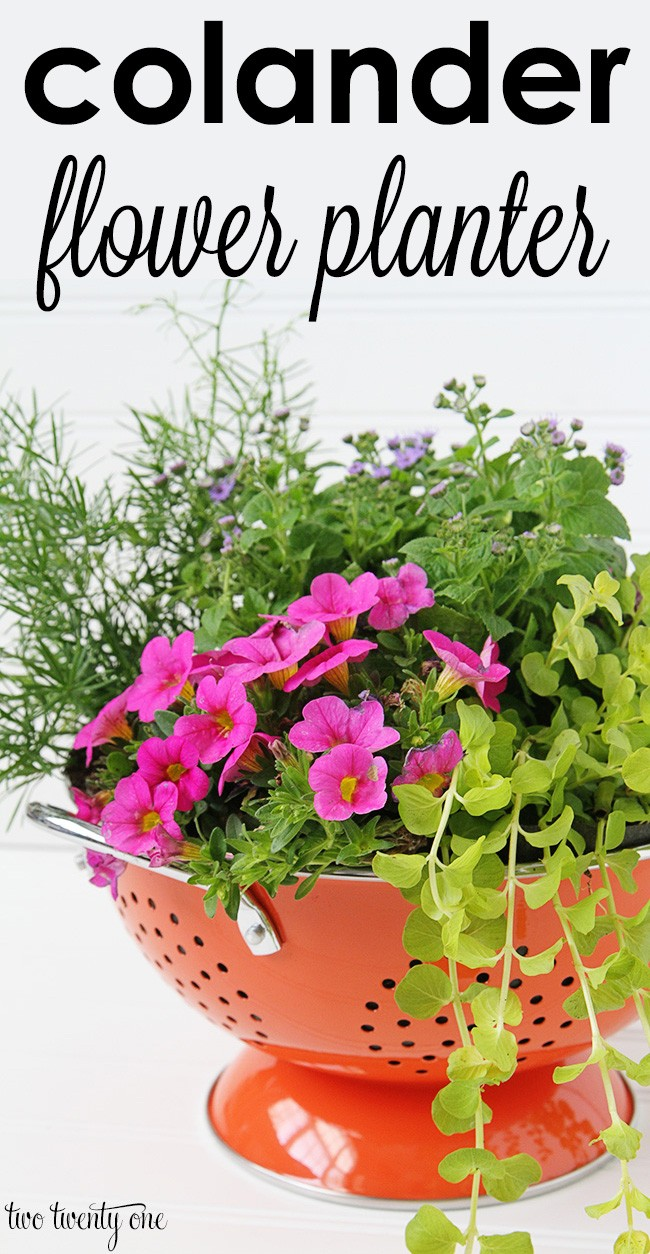 Colander flower planter. Creative ways to add color and joy to a garden, porch, or yard with DIY Yard Art and Garden Ideas! Repurposed ideas for the backyard. Fun ideas for flower gardens made from logs, bikes, toys, tires and other old junk. ~ featured at LivingLocurto.com