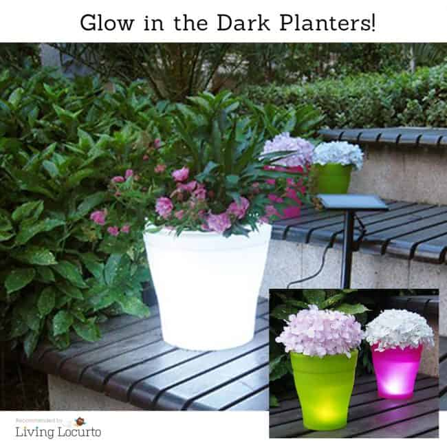 Glowing flower pots that change colors are perfect for the gardening mom!