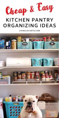 Cheap Kitchen Pantry Organization Ideas