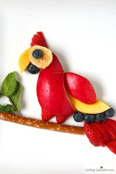 Parrot Fruit Snack | Healthy Kids Treat