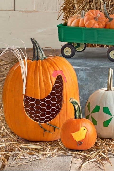 Creative Halloween Pumpkins - Chicken Hen Carving