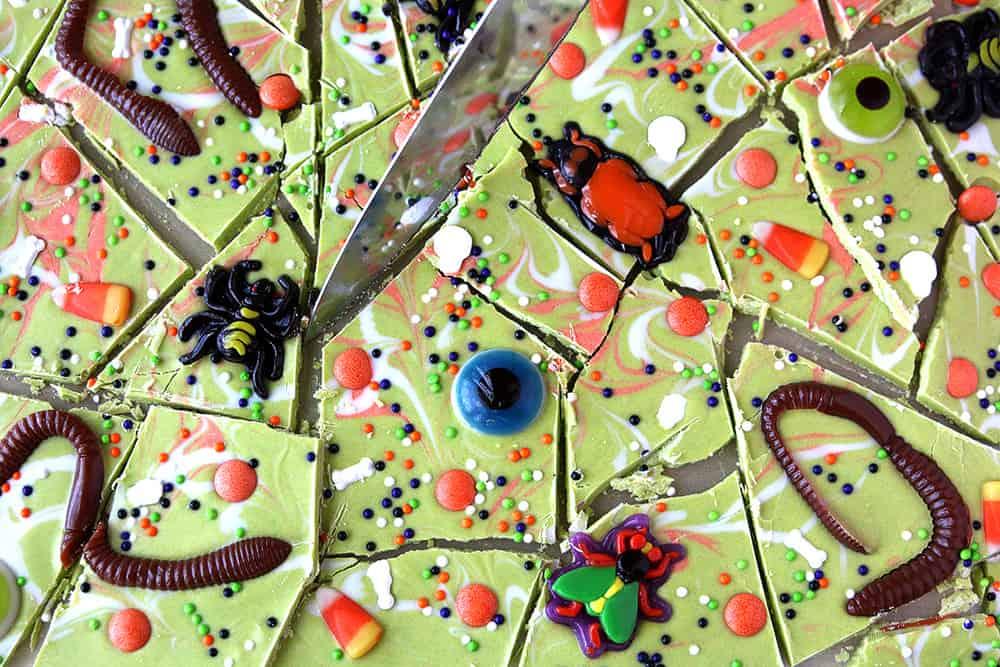Worms Amp Bugs Halloween Candy Bark Treats Living Locurto