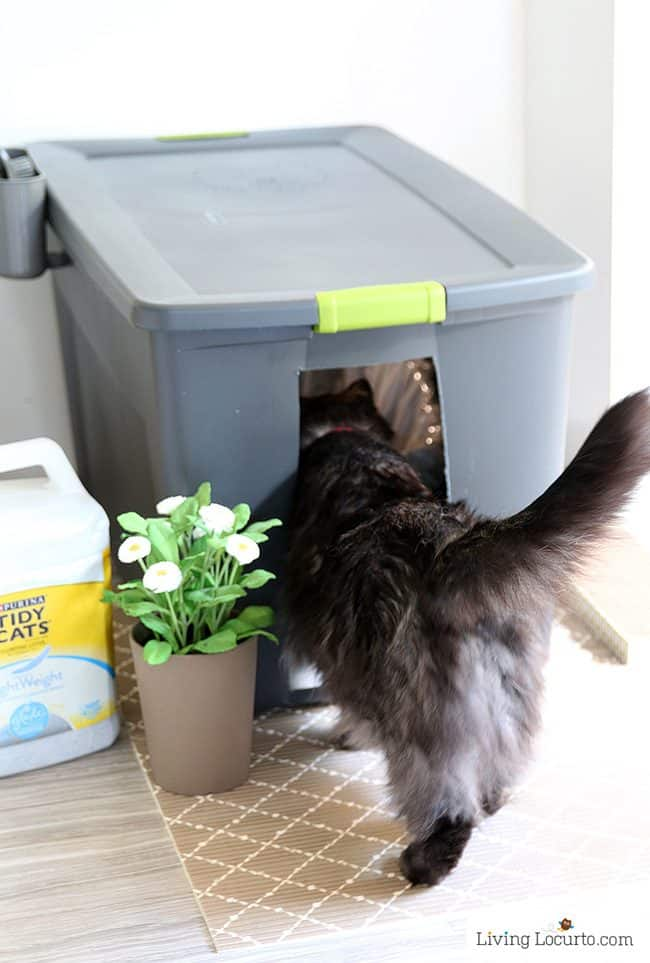 This hidden kitty litter box idea is genius! DIY cat litter box holder. Give your cat's space a fresh makeover with this home decor hack for pets.