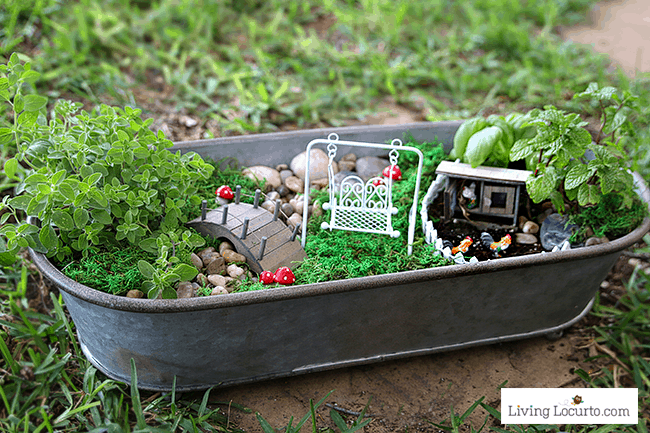 How To Make A Herb Fairy Garden. Easy Container Garden For Your Kitchen!  Easy